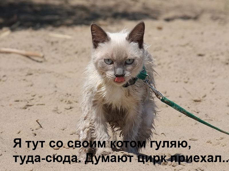 0_88450_8fec92ce_XL.jpg