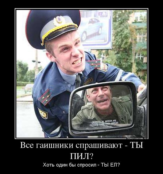 67800956_vse-gaishniki-sprashivayut-tyi-pil.jpg